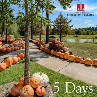 The Patch just around the corner in Provenance opens in just 5 days!  SEPTEMBER 27TH – OCTOBER 29TH Monday – Thursday 4 PM – 7 PM Friday 4 PM – 8 PM Saturday 10 AM – 8 PM Sunday 12 PM – 7 PM  Special events include Food Truck nights, Face Painting, Homemade Cookies For Sale, Grab & Go Crafts, and more! Stay tuned for an official calendar. Follow the Junior League of Shreveport Bossier for all the updates.   #seeshreveportbossier #shreveport #shreveportla #iamjlsb #pumpkinpatch #juniorleaguesb #shreveportbossier #familyfun #JLSB #shreveportmoms #shreveportkidactivities #bossierkidactivities #desoto #sbfunguide